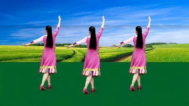 玫香广场舞一朵云蓝天飘过-跟着背面更简单