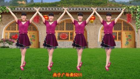 5211燕子广场舞爱陕北-演唱王二妮,嘹亮的歌声,太赞了