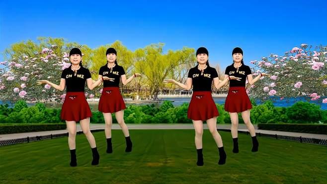鸽子广场舞鸟儿对花说-节奏轻快动感,舞步简单易学