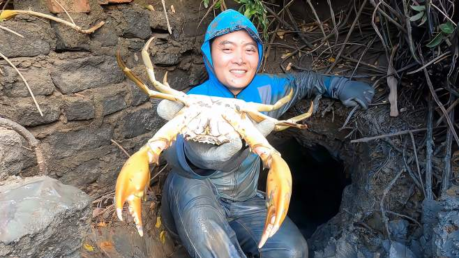 小伙赶海花2小时挖了个隔年老蟹洞,抓出的螃蟹意外的大-《思乡渔夫》