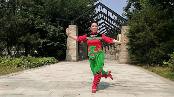 康乃馨广场舞绣金匾-经典老歌永流传,舞美新颖韵味足!