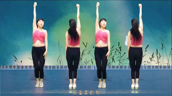 钦钦广场舞雨蝶-多少回味和思绪绕心尖!