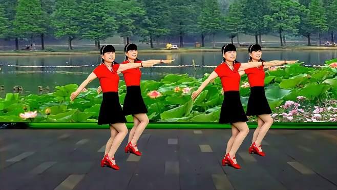 鸽子广场舞花开情脉脉-旋律优美醉人,简单又好看