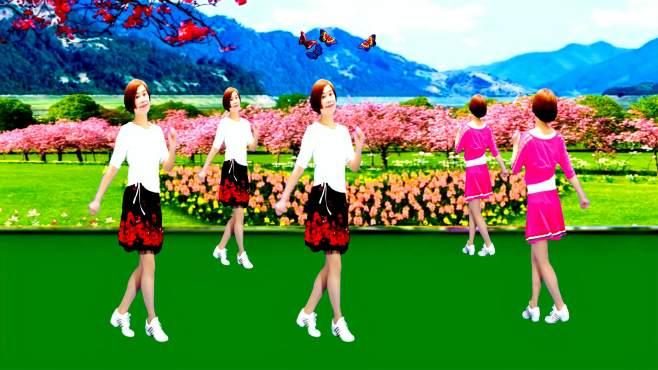 广州红色枫叶广场舞风中的花蝴蝶-正背面演绎