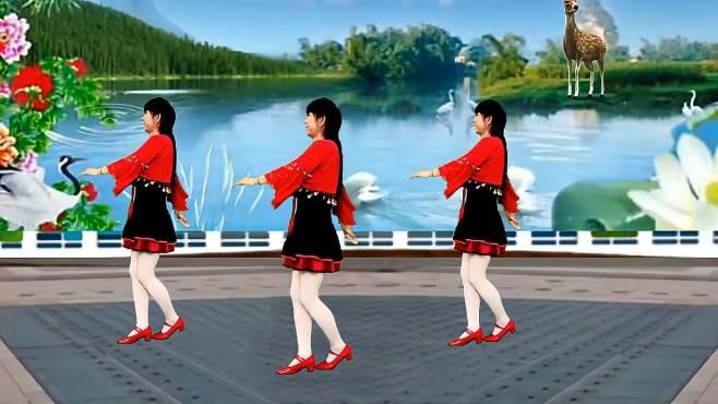 鸽子广场舞你潇洒我漂亮-歌甜舞美,好听好看附教学