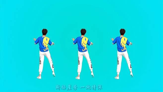 舞动朝阳广场舞风陵渡-背面广场舞,舞姿优美迷人!