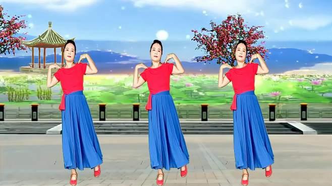 玫瑰怡林广场舞父亲-感人至深,柔美好看
