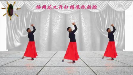阳光美梅广场舞乡愁-原创优美三步舞-正面演示-编舞L美梅