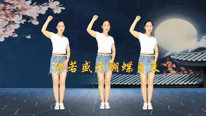 十里清清广场舞你若盛开蝴蝶自来-轻松跳鬼步