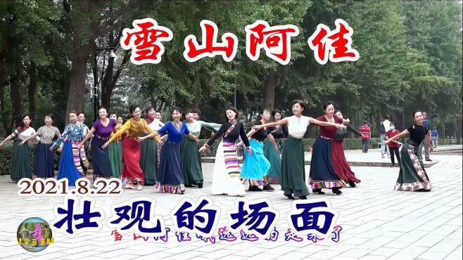 玲珑广场舞雪山阿佳-,看看今天都有哪些美阿佳!