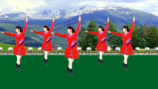 鸽子广场舞雪山姑娘-简单欢快32步,好看好学