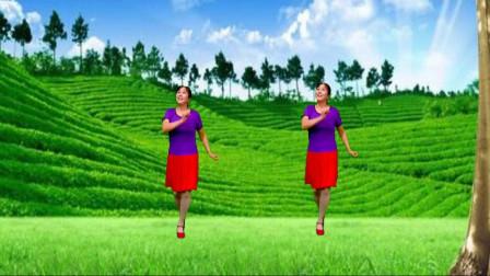 高安迷采广场舞花蝴蝶-音乐充满乐趣,越跳越开心,32步步子舞轻松跳