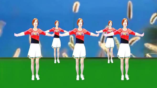 广州红色枫叶广场舞拉萨夜雨-纯音乐版音乐好听舞蹈好看