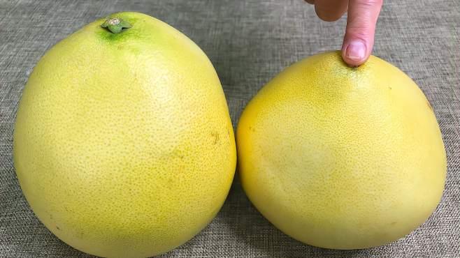 柚子甜不甜,看一眼这里就能分辨,一挑一个准,老果农方法真管用