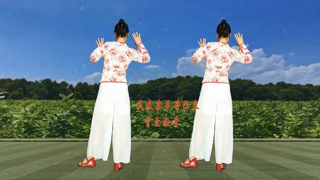 十里清清广场舞我在茶乡等你来-背面完整教学分解