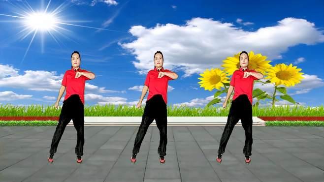 玫瑰怡林广场舞你能不能不要离开我-忧伤情歌,舞步动感