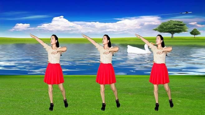 玫瑰怡林广场舞有一种思念叫永远-伤感动听,舞步欢快