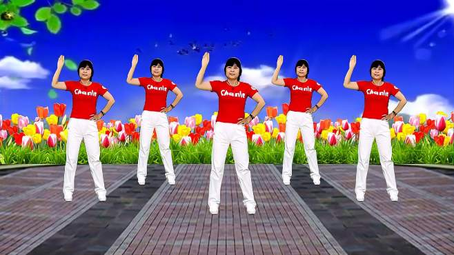 鸽子广场舞你别走-歌曲伤感动听,舞蹈好学好看